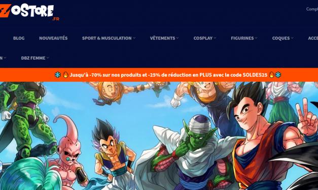 "Site frauduleux ""DBZ Store"""